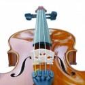 violin for paul